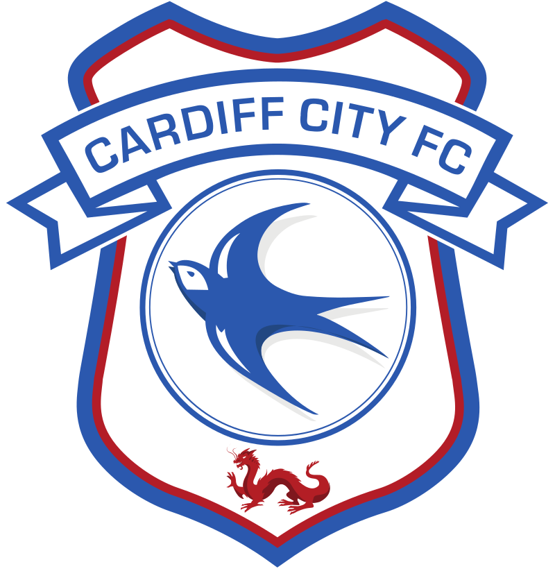 Cardiff city vs swansea city 03 11 2013 football ticket net - Cardiff city ticket office number ...